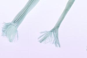 Glasseidenschlauch